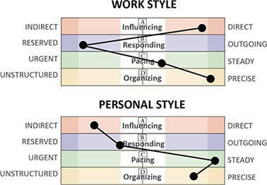 INSIGHT Inventory Personality, Behavioral Style Assessment
